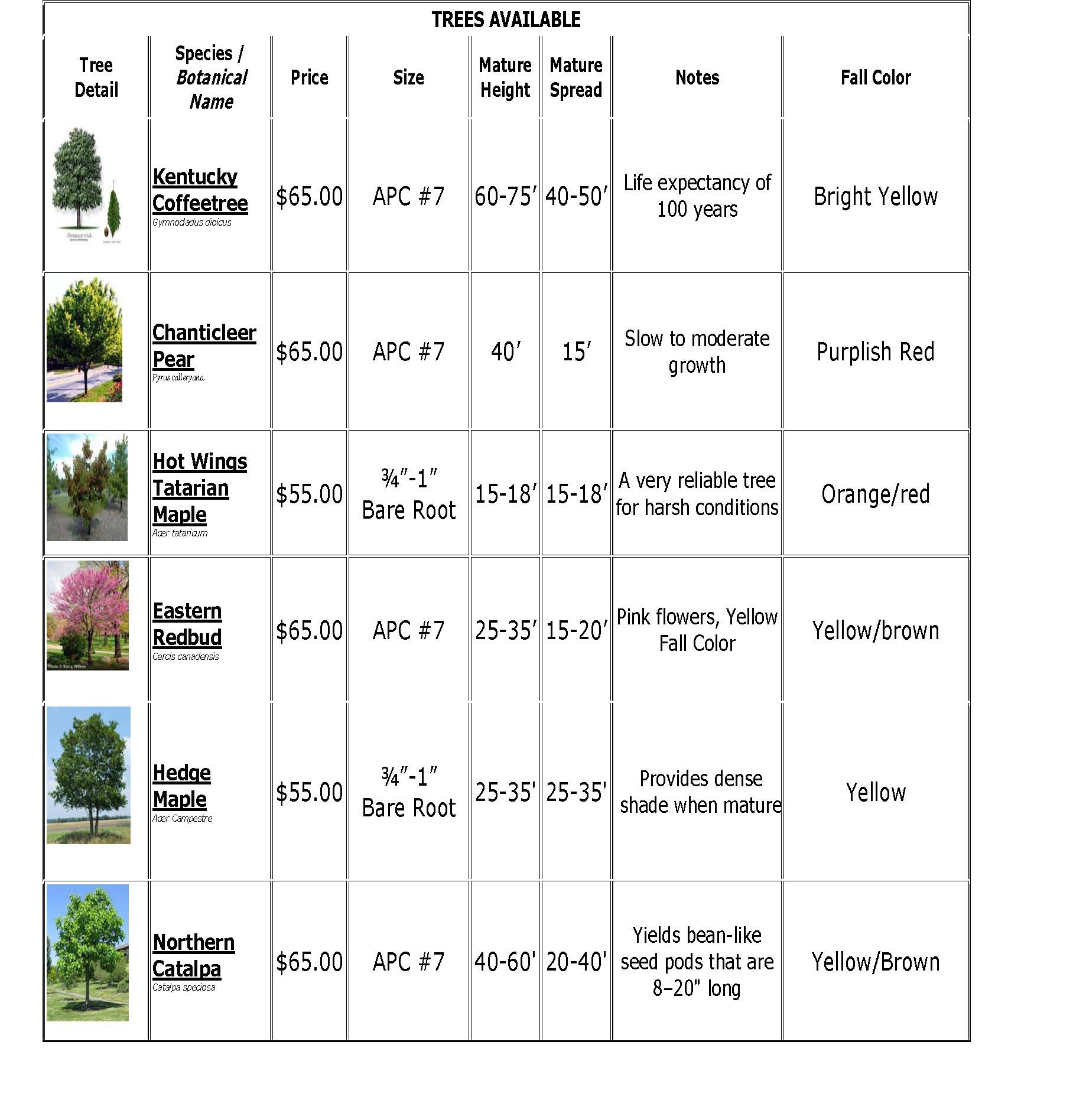 2018 Tree Descriptions Page 1 of 2